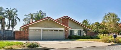 Rancho Cucamonga Single Family Home For Sale: 8409 Thoroughbred Street