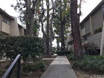 Covina Condo/Townhouse For Sale: 1135 Badillo