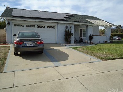 Upland Single Family Home For Sale: 1499 Alta Avenue