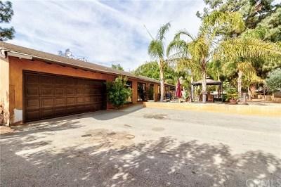 Rancho Cucamonga Single Family Home For Sale: 6790 Hellman Avenue