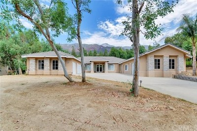 Alta Loma Single Family Home For Sale: 5188 Silver Mountain Way