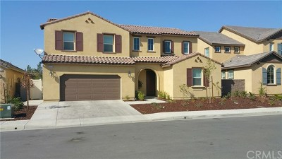 Lake Elsinore Single Family Home For Sale: 29213 Hibiscus