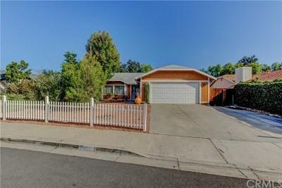 Lake Elsinore Single Family Home For Sale: 607 Le Harve Avenue