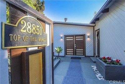 Laguna Beach Single Family Home For Sale: 28851 Top Of The World Drive