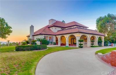 Alta Loma Single Family Home For Sale: 8771 Via El Dorado