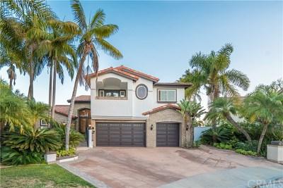 Laguna Niguel Single Family Home For Auction: 20 Sierra Vista