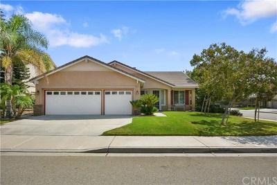 Fontana Single Family Home For Sale: 6261 Chantel Drive