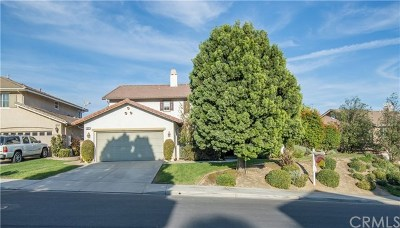 Chino Hills Single Family Home For Sale: 16727 Sagebrush Street