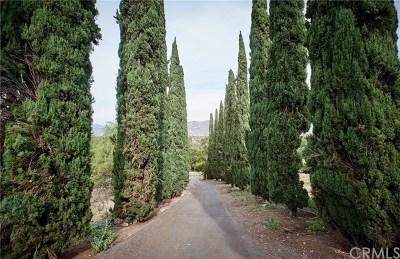 San Dimas Single Family Home For Sale: 560 E De Anza Heights Drive