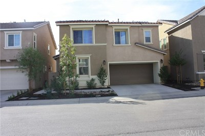 Lake Elsinore Single Family Home For Sale: 24251 N Lilac Lane