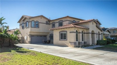 Fontana Single Family Home For Sale: 16243 Star Crest Way