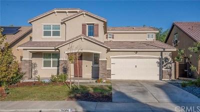 Lake Elsinore Single Family Home For Sale: 29506 Scoreboard