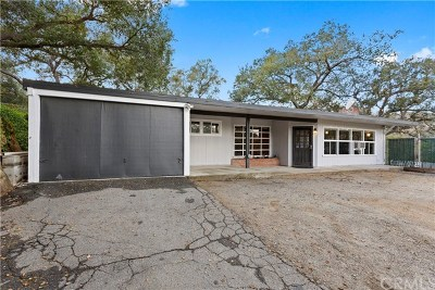 Chino Hills Single Family Home For Sale: 16741 Francis Drive