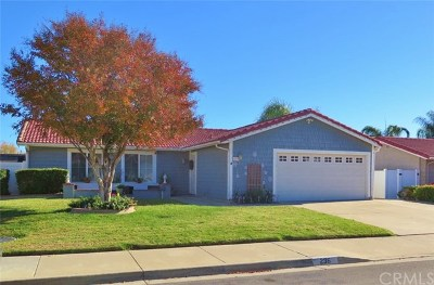 Lake Elsinore Single Family Home For Sale: 236 Broadway Street