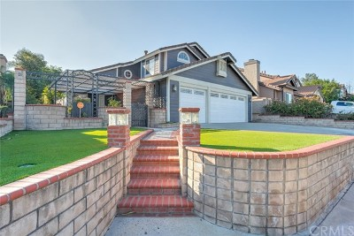 Chino Hills Single Family Home For Sale: 17974 Via La Cresta