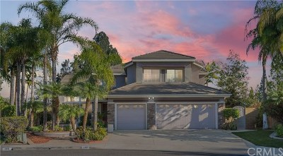 Placentia Single Family Home For Sale: 102 Downey Lane