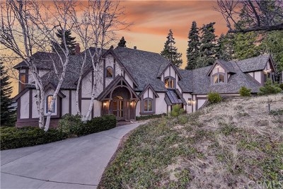 Lake Arrowhead Single Family Home For Sale: 29082 Bald Eagle Ridge