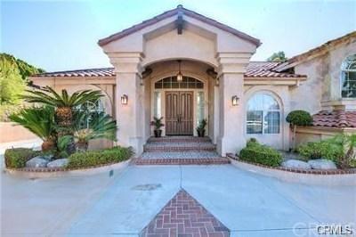 Diamond Bar Single Family Home For Sale: 2531 Braided Mane Drive