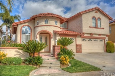 Chino Hills Single Family Home For Sale: 4528 Torrey Pines Drive