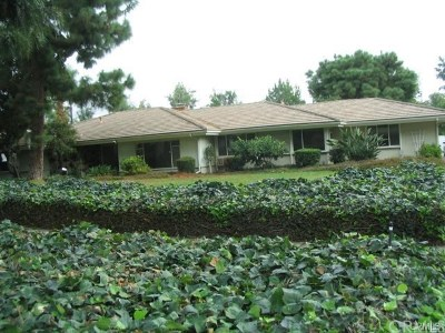 Upland Single Family Home For Sale: 1756 N Euclid Avenue