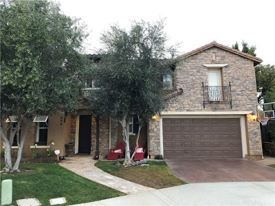 San Marcos Single Family Home For Sale: 894 First Light Road