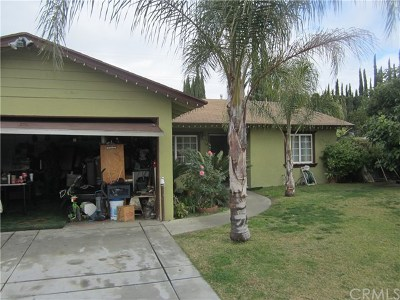 Pomona Single Family Home For Sale: 785 Cameo Ct