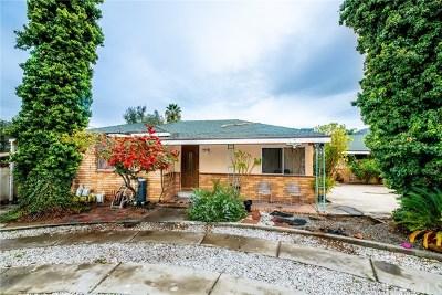 Lake Elsinore Single Family Home For Sale: 33100 Machado Street