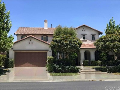 Chino Hills Single Family Home For Sale: 16809 Quail Country Avenue