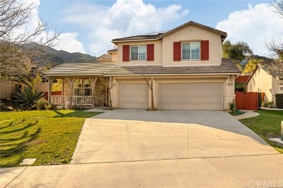 Corona Single Family Home For Sale: 23537 Cantara Road
