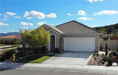 Beaumont Single Family Home For Sale: 1537 Tattlesall