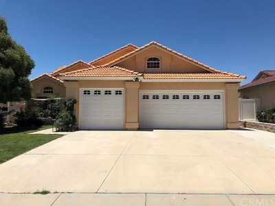 Wildomar Single Family Home For Sale: 22844 Valley Vista Circle