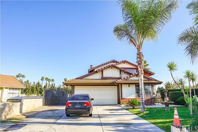 Chino Single Family Home For Sale: 5187 Independence Court