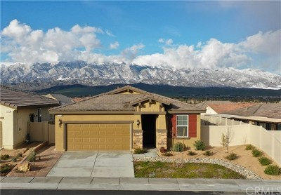 Beaumont Single Family Home For Sale: 384 Song Bird