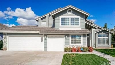 San Bernardino Single Family Home For Sale: 3156 Rosemary Lane