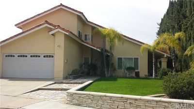 San Dimas Single Family Home For Sale: 1711 Paseo Jardin