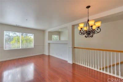 Aliso Viejo Condo/Townhouse For Sale: 9 Iron Bark