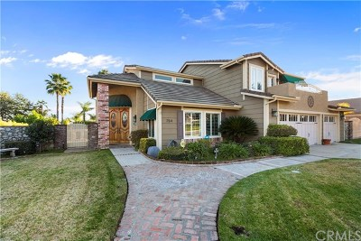 Upland Single Family Home For Sale: 754 W 20th Street