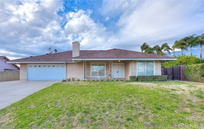 Rancho Cucamonga Single Family Home For Sale: 9190 Old Ranch Road