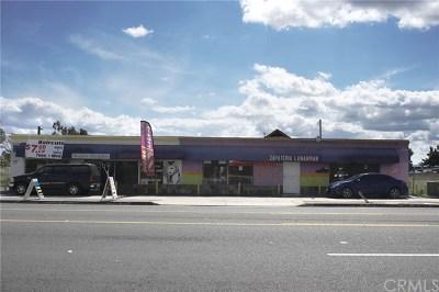 Ontario Multi Family Home For Sale: 932 E Holt Boulevard