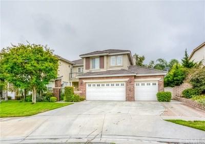 Corona Single Family Home For Sale: 1772 Sandtrap Drive