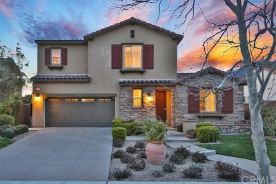 Fontana Single Family Home For Sale: 4858 Stoneglen Avenue