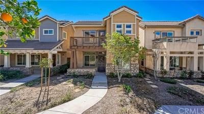 Riverside Single Family Home For Sale: 4963 Lindenwood Lane