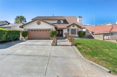 Victorville Single Family Home For Sale: 18216 Kalin Ranch Rd