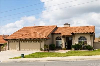 Rialto Single Family Home For Sale: 3838 N Flame Tree Avenue