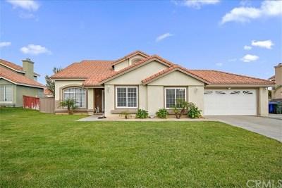 Rialto Single Family Home For Sale: 3577 N Grapewood Avenue
