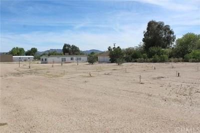 Newberry Springs Single Family Home For Sale: 45655 Raigosa Drive