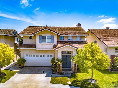 Westminster Single Family Home For Sale: 6268 Silverbridge Street