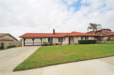 Rialto Single Family Home For Sale: 1039 W Lewis Street