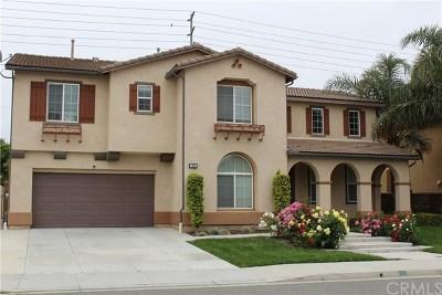 Eastvale Single Family Home For Sale: 7262 Elysse Street