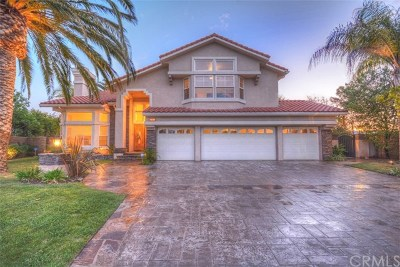 Chatsworth Single Family Home For Sale: 19690 Los Alimos Street